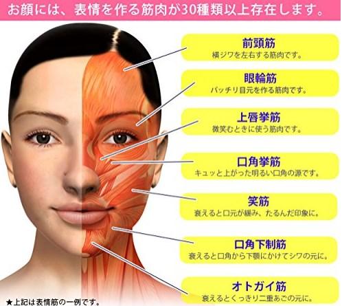 顔の筋トレが「逆効果」と言われている ...